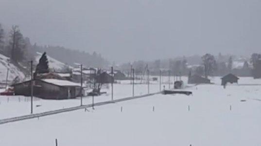 შვეიცარიაში ქარიშხალმა მატარებელი რელსებიდან გადააგდო