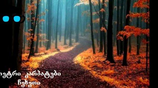 ტყეები სადაც დაკარგვა მოგინდება