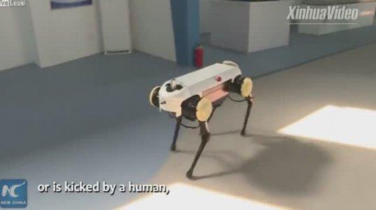 ახალი ჩინური რობოტი,რომელიც ცხენივით დარბის