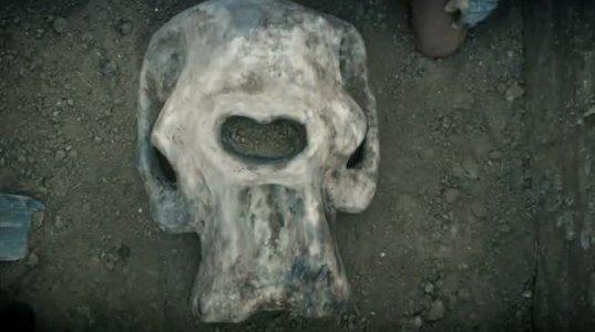 ვინ ცხოვრობდა დედამიწაზე 100 000 წლის წინ-გიგანტებიმათი არსებობა დადასტურებულია