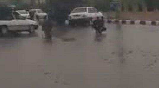 თევზის წვიმა ირანში (2018 წლის აპრილი)