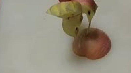 ულამაზესი ვაშლი