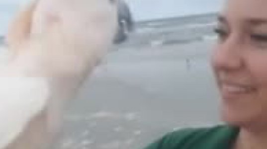 თუთიყუშმა პირველად ნახა ოკეანე და აღტაცებისაგან პირს არ აჩერებს იმდენს საუბრობს