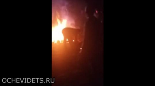 """""""ჭიაკოკონას"""" მსგავს  რუსულ დღესასწაულზე ცეცხლზე გადახტომისას გოგო ცეცხლში ჩავარდა"""
