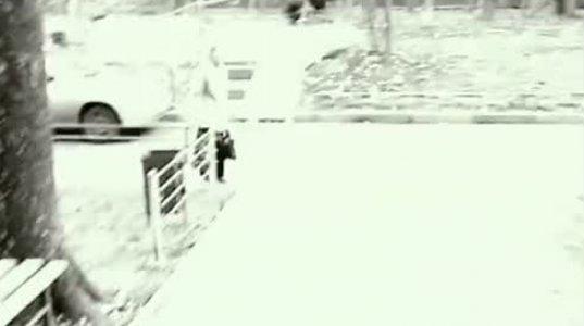სერიული მკვლელი და ბიტცევსკის პარკის საშინელებები