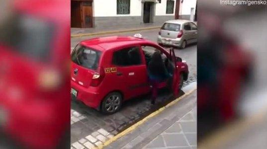 ლამა ტაქსით გადაყავთ