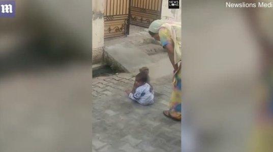როგორ ეფერება მაიმუნი პატარა ბიჭს