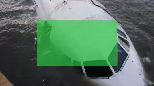 როგორ გადაარჩინა პილოტმა ხალხი, როცა თვითმფრინავი ჩიტების გუნდს შეეჯახა და  ჩამოვარდა