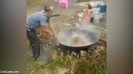 შოკისმომგვრელი ვიდეო, კაცი როგორ ხარშავს ცოცხალ ძაღლს ადუღებულ წყალში