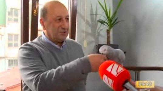 ბათუმელი მოლაპარაკე თუთიყუში პატრიკა ინტერნეტ სივრცეს იპყრობს