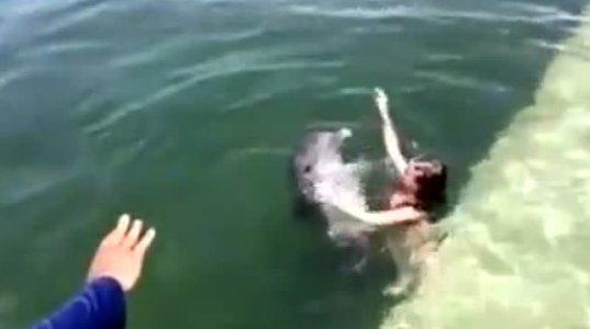 დელფინმა პატარა ბავშვი აუზში გაასეირნა და ნაპირზე გადმოსვა