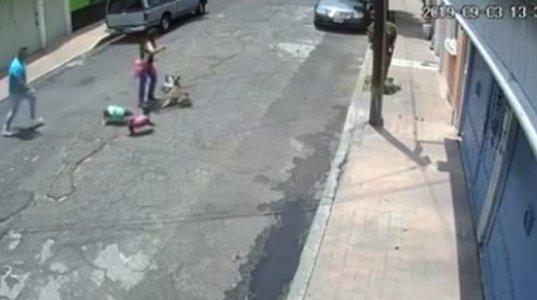ასეთი არაკაცი ციხეში უნდა იჯდეს, ნახეთ რა უქნა სრულიად უდანაშაულო გოგოს, რომელიც ძაღლს ასეირნებდა