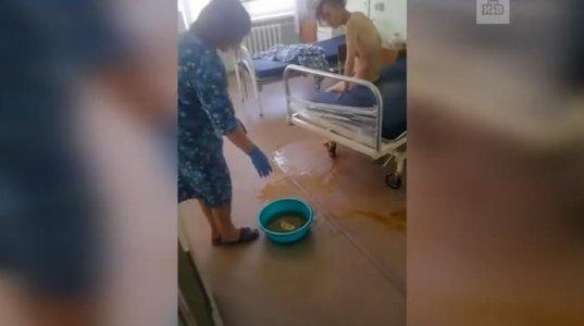 არაადამიანი ქალი, იმ აქოთებულ ტაშტში უნდა ჩააყოფინო თავი, როგორ ექცევა ავადმყოფს