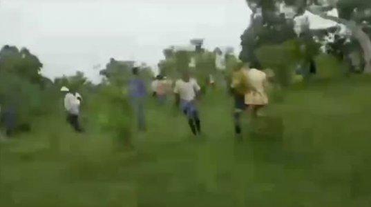 საჰარანპურის ტყეში ხალხს ვეფხვი დაესხა თავს