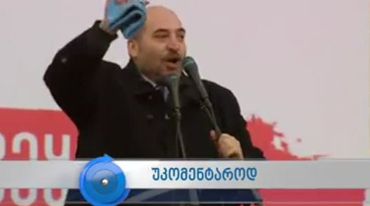 ქართული ოპოზიცია