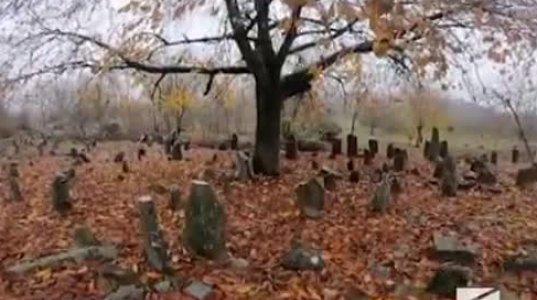 რუსთავი 2-ის რეპორტაჟი ჰერეთიდან - ვიდეო