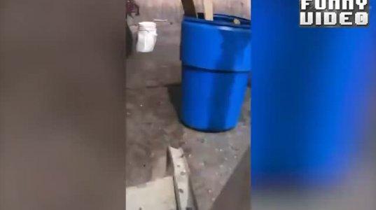 ცრემლებამდე სიცილი თუ გსურთ, მაშინ ეს ვიდეო დაგეხმარებათ