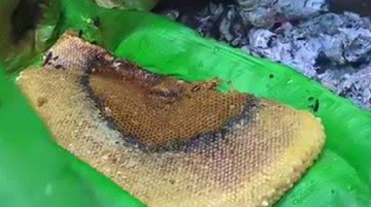 ველურ თაფლს რა გემრიელად მიირთმევს