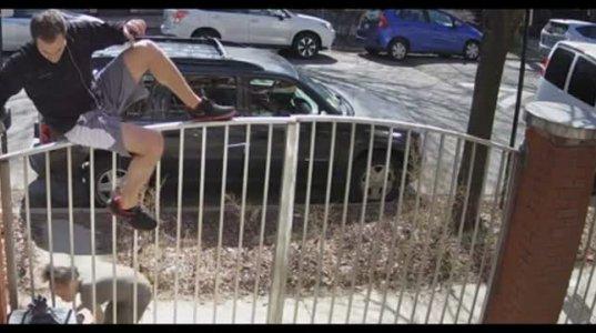 სასეირნოდ ალიკაპის გარეშე გამოყვანილი პიტბული გამვლელ ბიჭს თავს დაესხა