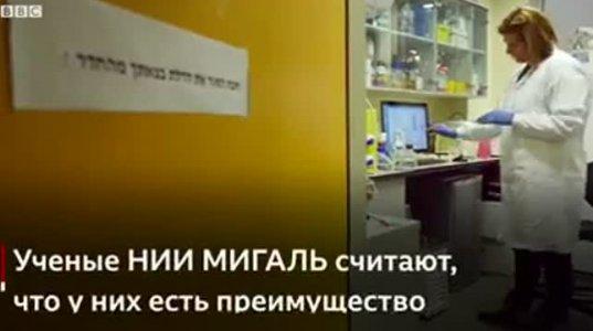 ებრაელი ექიმები ამტკიცებენ,რომ შექმნეს ვაქცინა კორონავირუსის წინააღმდეგ