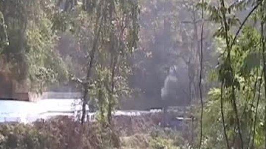 ეკოლოგიურად სუფთა ტრანსპორტი ინდოეთში