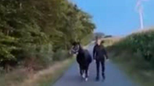 გარბენი ცხენთან ერთად