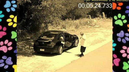 მანქანა  ისეთ ადგილზე  გაჩერდა,  სადაც ხალხი არ  იყო და საცოდავი  მარტო  დატოვა....