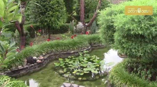 დეკორატორ პაატა გოგელიას   საოცარი სილამაზის ბაღი ზუგდიდის რაიონში