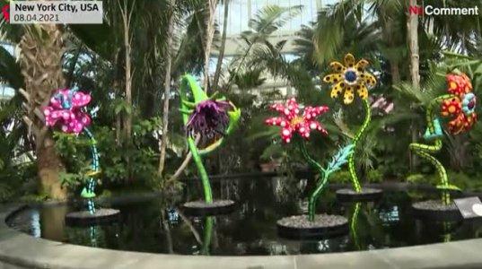 """ნიუ-იორკის ბოტანიკურ ბაღში გაიხსნა იაპონელი მხატვრის იაეი კუსამას გამოფენა"""" კოსმოსური ბუნება"""""""