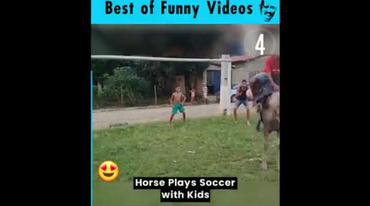 ცხენი, რომ გაგიტანს ბურთს ფეხბურთი ცხოვრებაში არ უნდა ითამაშო